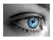 Help Prevent Macular Degeneration